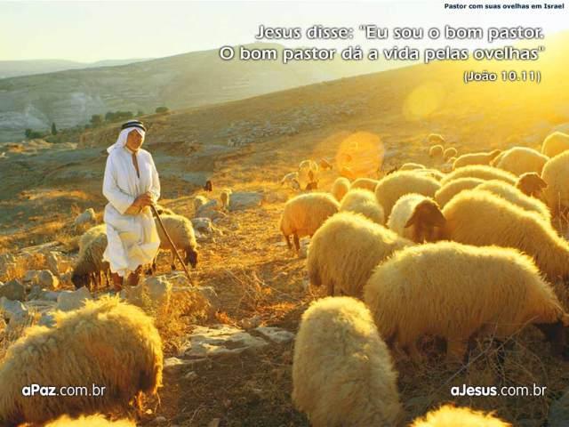O Senhor é meu pastor.